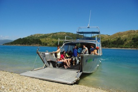 Scamper - Whitsunday Island Camping Connection