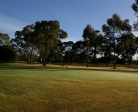 Winchelsea Golf Club - Accommodation Cairns