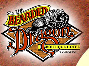 The Bearded Dragon Hotel - Accommodation Cairns