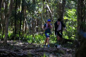 Elephant Trail Race - Accommodation Cairns