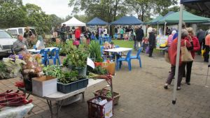 Hamilton HIRL Farmers and Craft Market - Accommodation Cairns