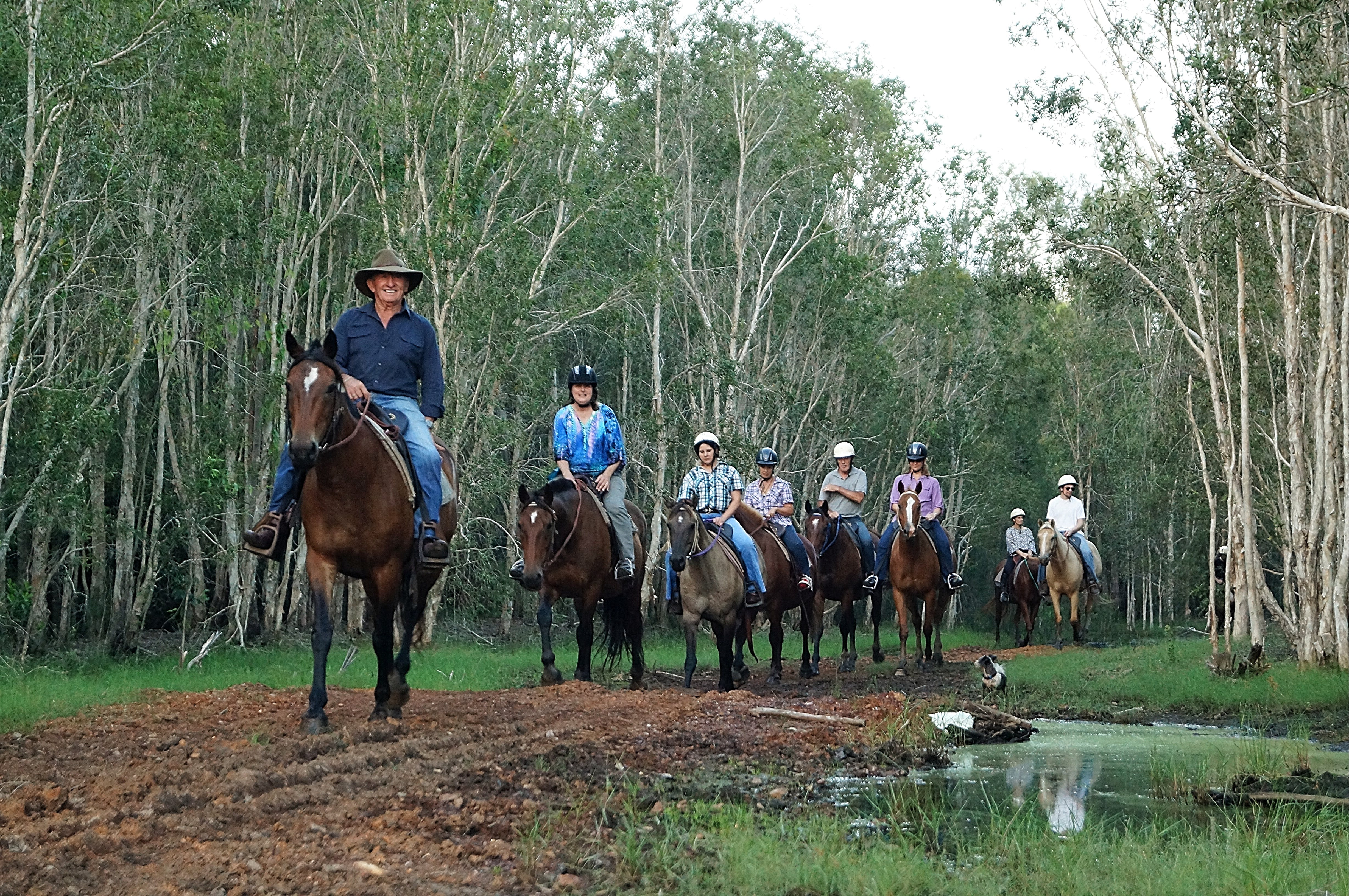 Night Horse Ride and Dinner - Accommodation Cairns