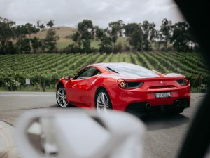 The Prancing Horse Supercar Drive Day Experience - Melbourne Yarra Valley - Accommodation Cairns