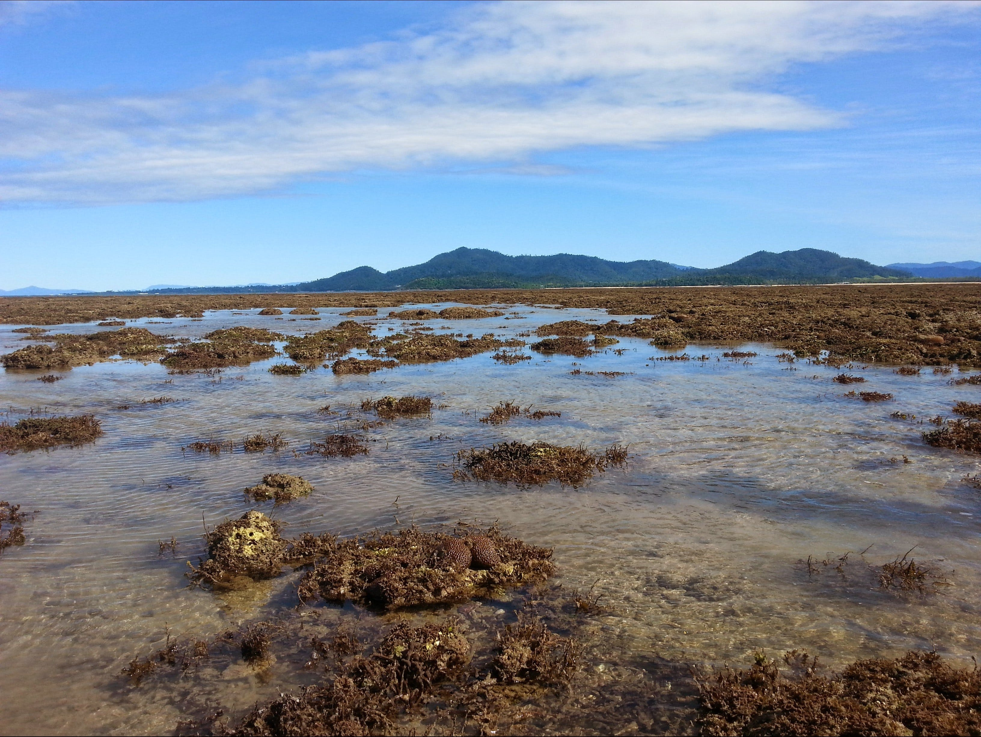 Walk to the Reef - Accommodation Cairns