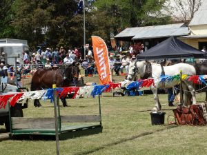 Carcoar Show - Accommodation Cairns