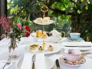 High Tea at Melbourne Zoo - Accommodation Cairns