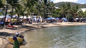 Lions Airlie Beach Community Markets - Accommodation Cairns