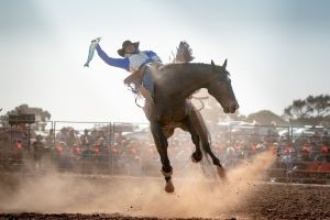 Rodeo by the Sea - Streaky Bay - Accommodation Cairns