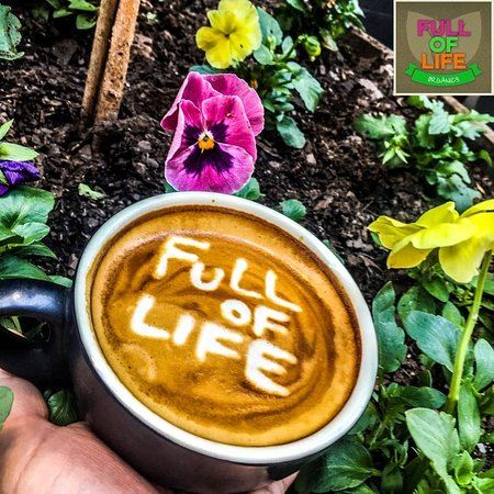 Full of Life Organics - Accommodation Cairns