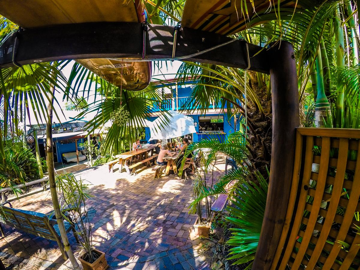 Cool Bananas Backpackers - Accommodation Cairns